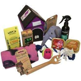 New Girl Puppy Hamper Hamper