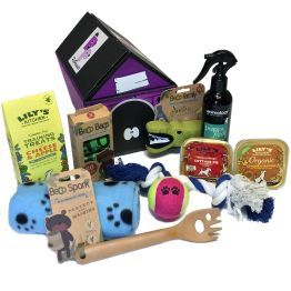 New Boy Puppy Hamper Hamper
