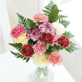 Just Carnations Hamper
