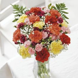 Rainbow Carnations Hamper