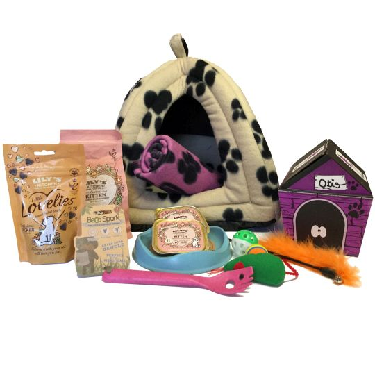 New Girl Kitty Hamper Hamper