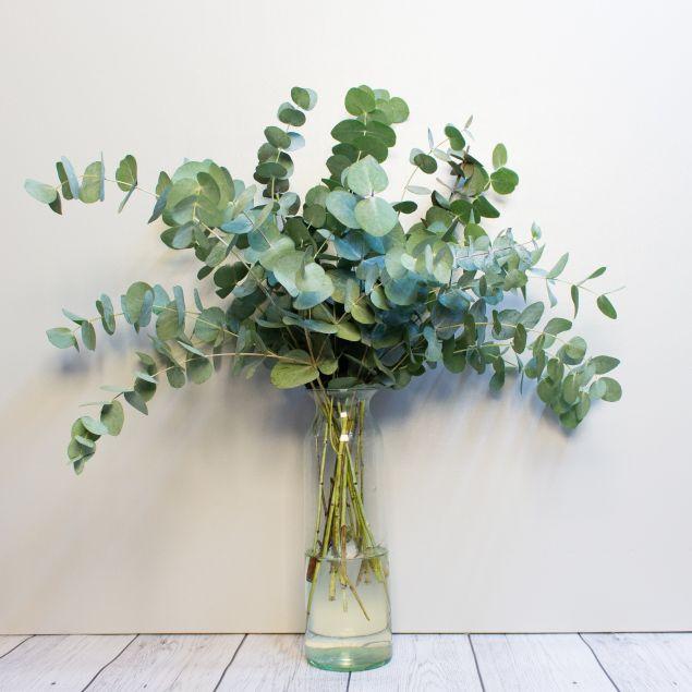 Elegant Eucalyptus Hamper