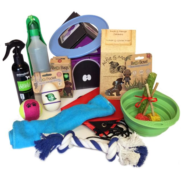 The Day Out For Dogs Hamper Hamper
